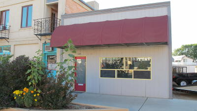 Aztec Commercial For Sale: 103 N Main Avenue