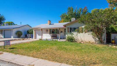 Aztec, Flora Vista Single Family Home For Sale: 807 Ute Avenue