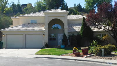 Single Family Home For Sale: 4400 Sandia Court
