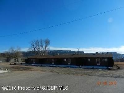 San Juan County Multi Family Home For Sale: 1415 Juneau Place