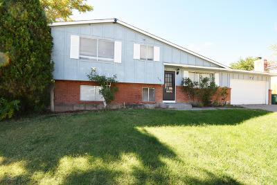Farmington Single Family Home For Sale: 3105 Greenbriar Avenue