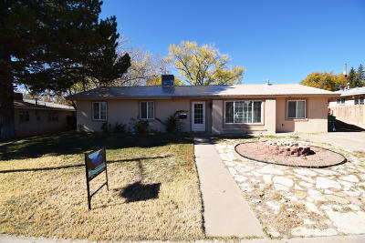 Farmington Single Family Home For Sale: 3605 N Coronado Avenue
