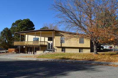 Farmington Single Family Home For Sale: 616 Meseta Street