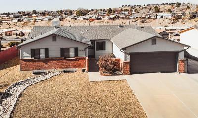 San Juan County Single Family Home For Sale: 3401 N Mesa Verde Avenue