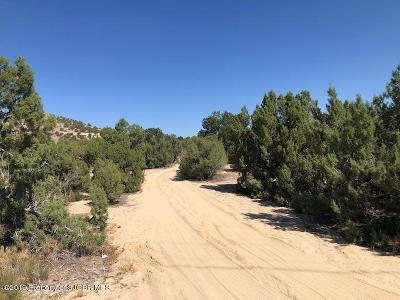 Farmington Residential Lots & Land For Sale: 2730 Pinon Frontage Road