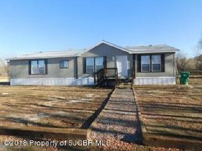 Aztec, Flora Vista Manufactured Home For Sale: 137 Road 2929