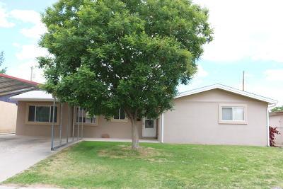Aztec, Flora Vista Single Family Home For Sale: 424 Parkland Drive