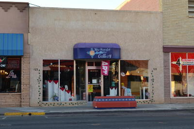 San Juan County Commercial For Sale: 123 W Main Street