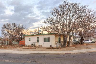 Farmington Single Family Home For Sale: 1307 S Butler Avenue