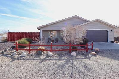 Fruitland, Kirtland Single Family Home For Sale: 40 Road 6411