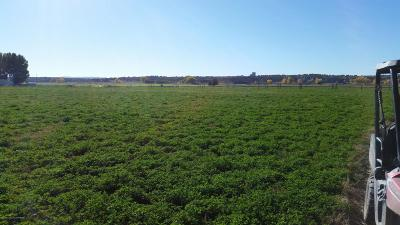 Bloomfield Residential Lots & Land For Sale