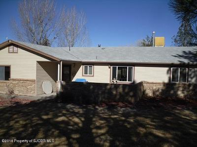 Single Family Home For Sale: 5862 Us 64