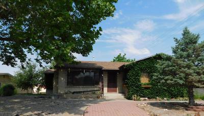 Farmington Single Family Home For Sale: 413 N Locke Avenue
