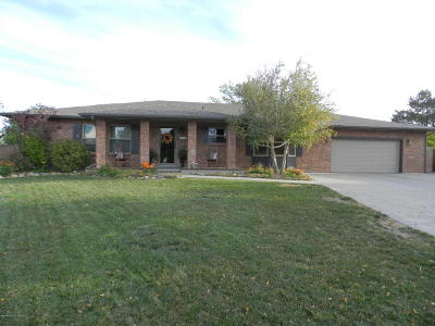 Farmington Single Family Home For Sale: 3210 N Mountain View Drive