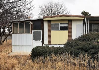 Kirtland Manufactured Home For Sale: 23 Road 6319