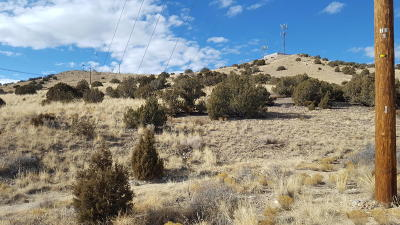 Farmington Residential Lots & Land For Sale: Xx Hood Mesa Trail