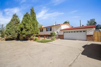 Farmington Single Family Home For Sale: 1602 E 30th Street