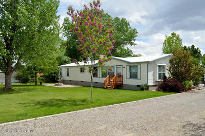 Bloomfield Manufactured Home For Sale: 26 Road 5245