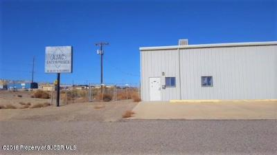 San Juan County Commercial For Sale: 246 N 1st Street