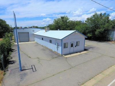 San Juan County Commercial For Sale: 113 S Light Plant Road