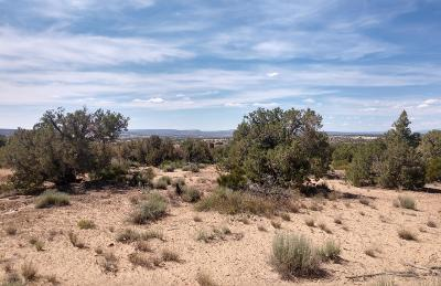 Farmington Residential Lots & Land For Sale: 6135 Hood Mesa Trail