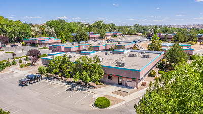 San Juan County Commercial For Sale: 2700 N Farmington Avenue #F