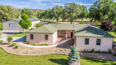 San Juan County Single Family Home For Sale: 16850 Us 550