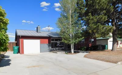 San Juan County Single Family Home For Sale: 2400 N Cochiti Avenue