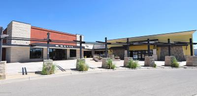 San Juan County Commercial For Sale: 5920 E Main Street #A, B, D