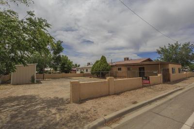 San Juan County Single Family Home For Sale: 2909 E Cedar Street