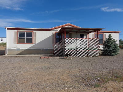 Bloomfield Manufactured Home For Sale: 5 Road 5069