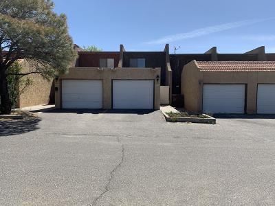 San Juan County Condo/Townhouse For Sale: 1082 E Navajo Street #E