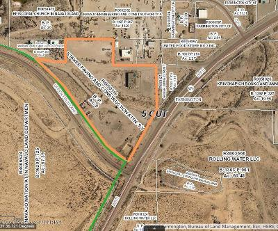 San Juan County Commercial For Sale: 1800 Bisti Hwy
