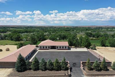 Aztec, Flora Vista Single Family Home For Sale: 210 Road 3000