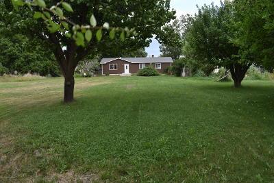 San Juan County Single Family Home For Sale: 1290 E Blanco Boulevard