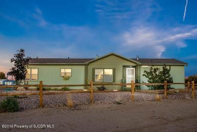 Bloomfield Manufactured Home For Sale: 5 Road 4988
