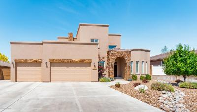 San Juan County Single Family Home For Sale: 6433 Bent Tree Circle
