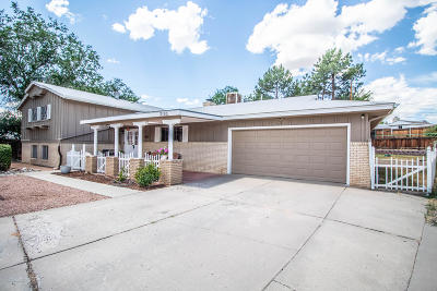 Single Family Home For Sale: 3105 Pontiac Drive