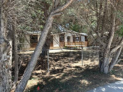 Bloomfield Manufactured Home For Sale: 806 Camino Road