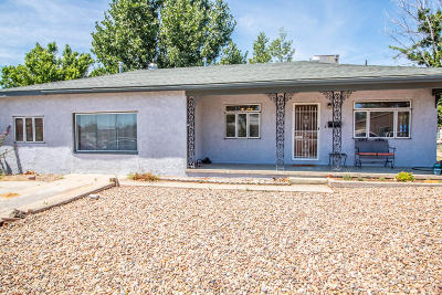 Farmington Single Family Home For Sale: 903 N Buena Vista Avenue