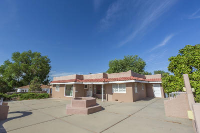 San Juan County Commercial For Sale: 315 N Auburn Avenue
