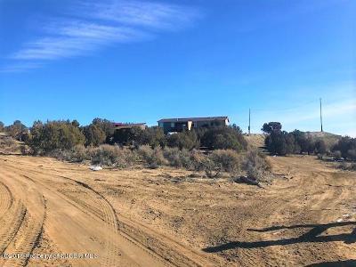 Aztec, Flora Vista Manufactured Home For Sale: 264 Road 3160