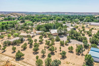 San Juan County Single Family Home For Sale: 90 Road 3535