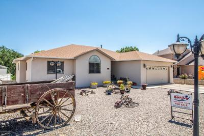 Aztec Single Family Home For Sale: 208 Heritage Lane