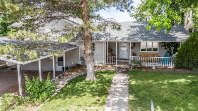 Single Family Home For Sale: 313 S Mesa Verde Avenue