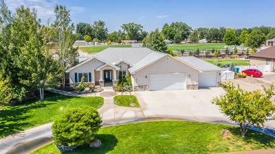 Farmington Single Family Home For Sale: 5015 Samantha Lane
