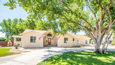 San Juan County Single Family Home For Sale: 29 Road 3581