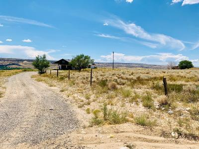 San Juan County Commercial For Sale: 701 McHenry Drive