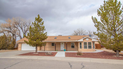 Aztec, Flora Vista Single Family Home For Sale: 609 French Drive