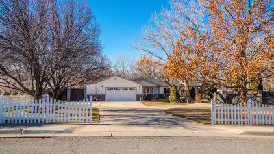 Aztec Single Family Home For Sale: 704 Sagebrush Drive